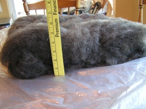 Wool Layout Thickness
