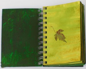 Green Studies Notebook 1