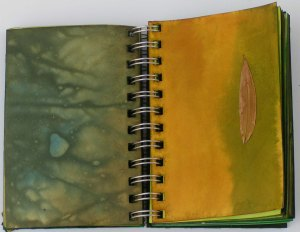 Green Studies Notebook 3