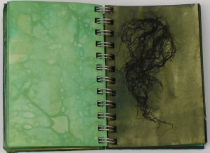 Green Studies Notebook 5
