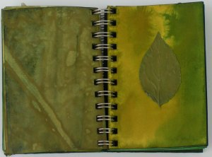 Green Studies Notebook 7