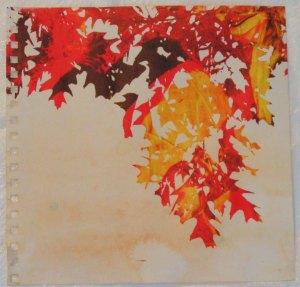 Leaves Printed in Multi Colors