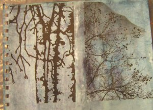 Paper Removed from Photo Transfers