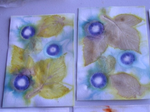 Sally's Eco Prints