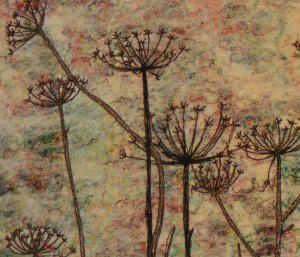 Seed Heads Close Up