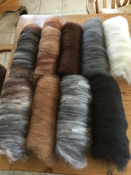 DAWN - NATURAL BATTS